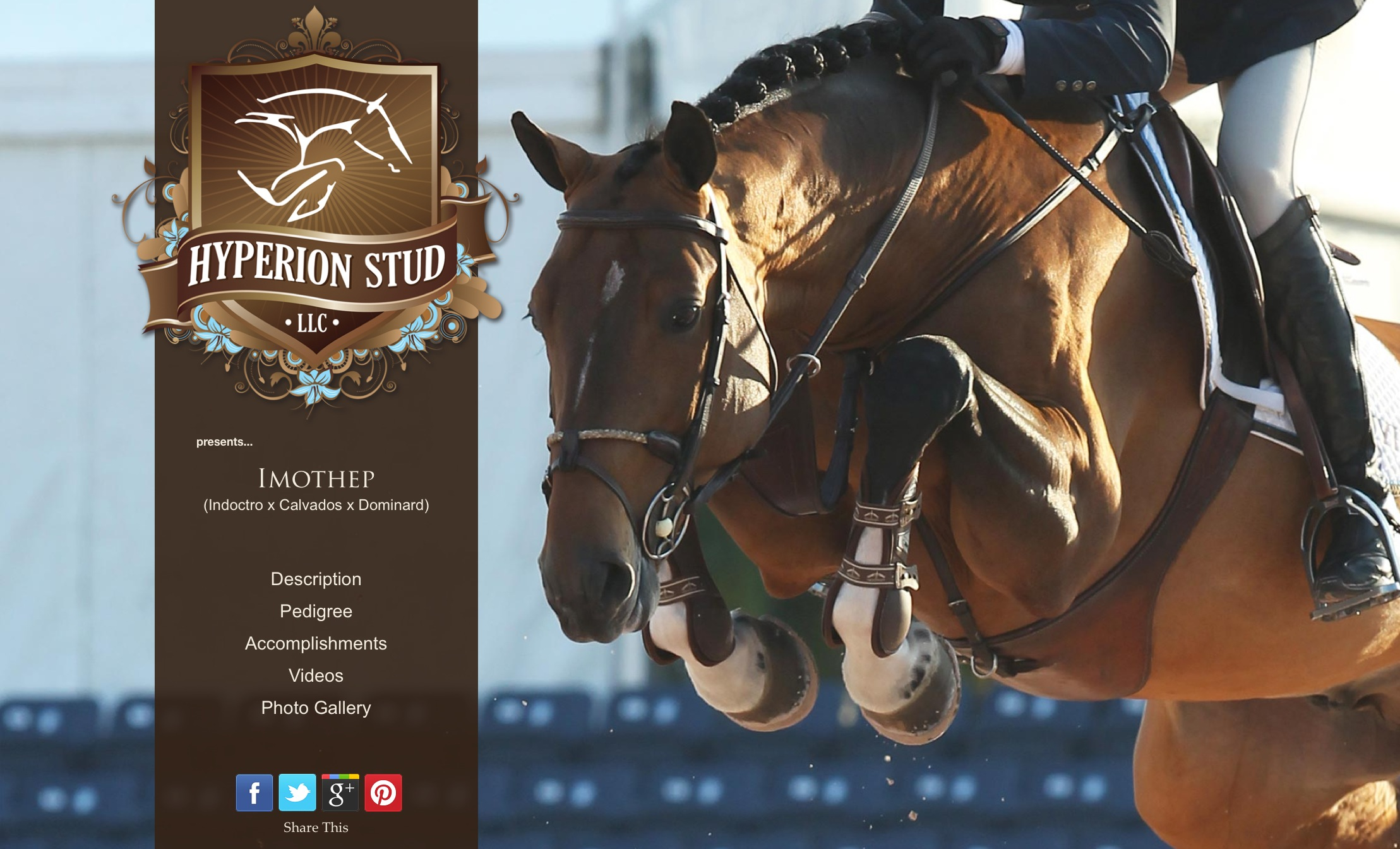 Official Debut of the NEW HyperionStud.com!