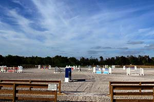 hyperion-stud-south-farm-wellington-florida-fl-show-jumpers-equestrian-training-stables