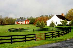 stallion-barn-hyperion-stud-stallion-station-virginia