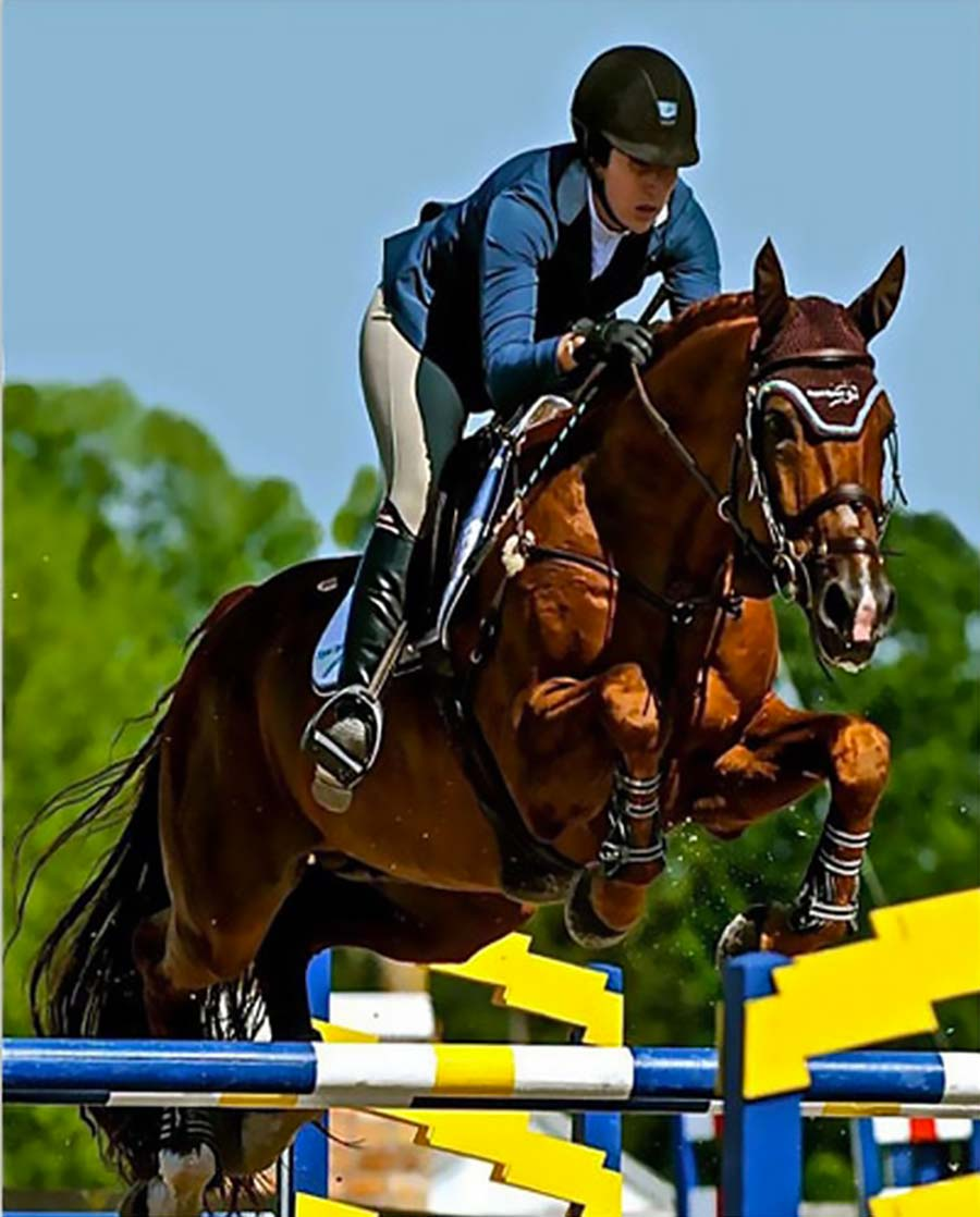 Val de Loir-Imoo KWPN Warmblood by Ahorn