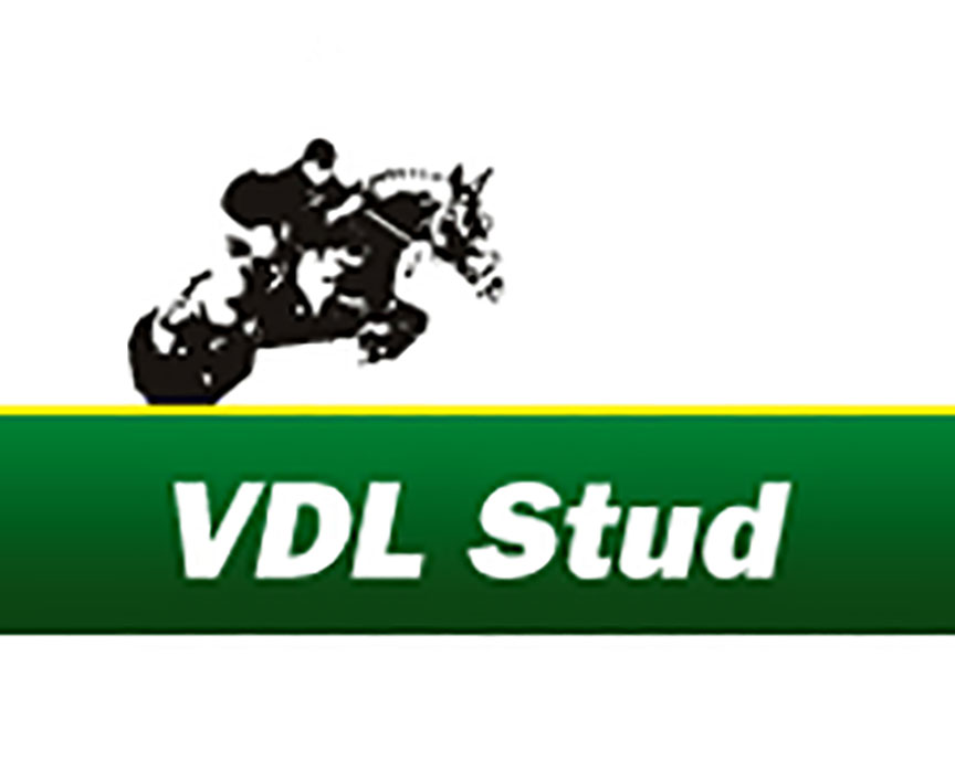 VDL Stud Logo Holland Warmbloods Jumpers