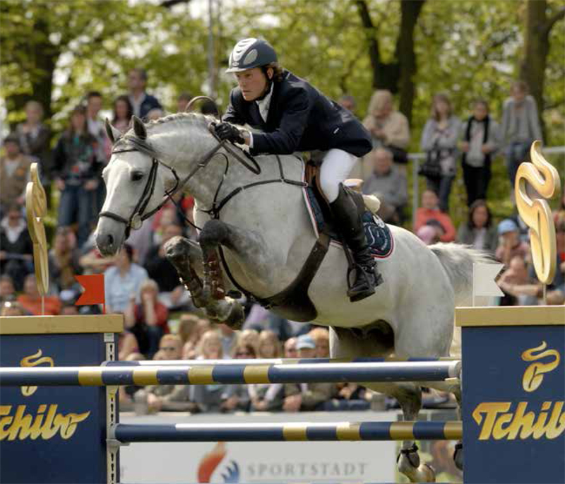 Cartani Offspring for Sale at Hyperion Stud Show Jumping and Warmblood Stallions